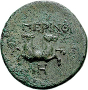 Bronze Æ21 (Perinthos) – revers