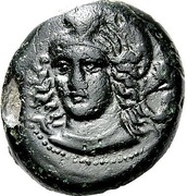 Tetrachalkon (Phaloria) – avers