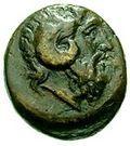 Bronze Æ16 (Pitane) – avers