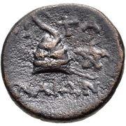 Bronze Æ14 (Pitane) – revers