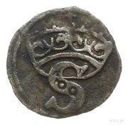 Denar - Zygmunt I Stary (Toruń mint) – avers