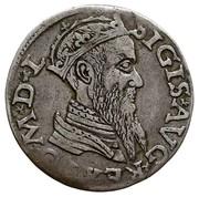 Grosz litewski - Sigismond II Auguste (différent lituanien - 5e type) – avers