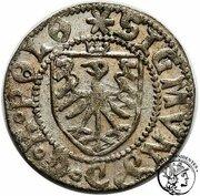 Szeląg gdanski - Zygmunt I Stary (Gdansk mint – avers