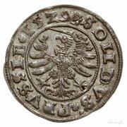Szeląg pruski - Zygmunt I Stary (Toruń mint) – revers