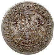 Szeląg gdański - Interregnum (Gdańsk mint) – avers