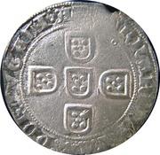 Tornês de busto (Lisbonne) - Ferdinand I – revers