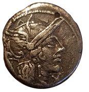 Denarius (M Marcus Papyrus Carbo) – avers