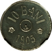 10 Bani - Carol I (Pattern Strike) – revers