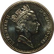 1 livre Elizabeth II (3e effigie, poireau gallois, laiton) -  avers