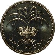 1 livre Elizabeth II (3e effigie, poireau gallois, laiton) -  revers