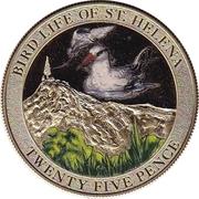 25 Pence - Bird Life - Storm Petrel – revers