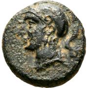 AE13 - Evagoras II (Salamis) – avers