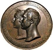 Medal - Queen Victoria & Prince Albert, Marriage (by Helfricht) – avers