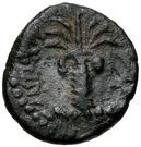 Bronze Æ13 - Antiochos III (Tyre) – revers