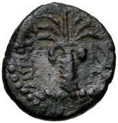 Bronze Æ13 - Antiochos III (Tyre) -  revers
