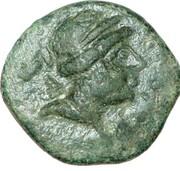 Dichalque de Séleucos III Céraunos – avers