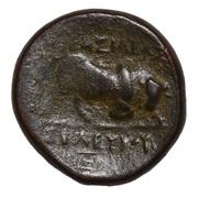 Chalkon - Seleukos I Nikator – revers