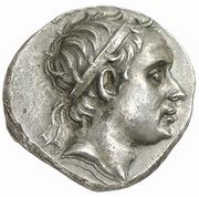Drachm - Seleukos IV Philopator (Soloi mint) – avers