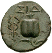 Bronze Æ16 (Side) – revers
