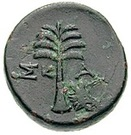 Bronze Æ20 (Skamandria) – revers
