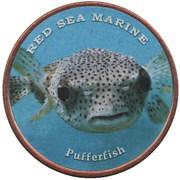 1 Shilling (Pufferfish) – revers