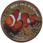 1 Shilling (Clownfish) – revers