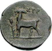 Bronze Æ16 (Syros) – revers