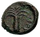 Bronze Æ12 (Tiryns) – revers