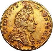 Jeton Royal - Louis XIV – avers