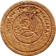 Wooden Nickel - Wooden Nickel - Niagara Falls, Ontario – avers
