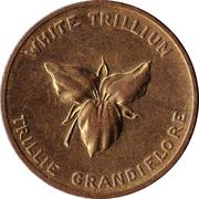 Canada Ontario Medal 1867 – avers