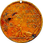 The Great War Peace Medallion – avers