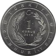 1 Kuruş (Royaume des Seldjoukides) -  avers