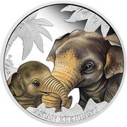 50 Cents - Elizabeth II (Asian Elephant) – revers