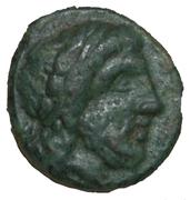 Bronze de Vélia – avers