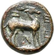 Bronze Æ17 (Zeleia) – revers