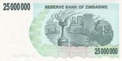 25 000 000 Dollars (Bearer Cheque) – revers